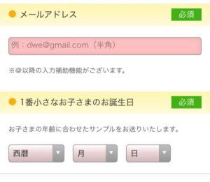 DWE(ディズニー英語システム)無料サンプル請求 入力項目
